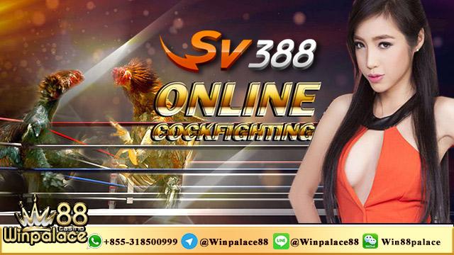 Cara Login SV388 | Link Login SV388 | Club388