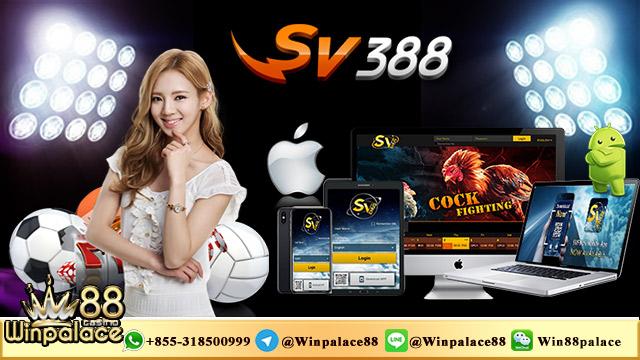 SV388 App   Download Aplikasi SV388 APK