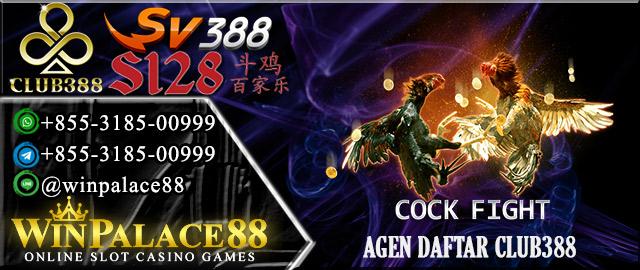 Agen Daftar Club388