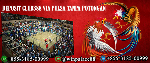 Deposit Club388 via Pulsa Tanpa Potongan