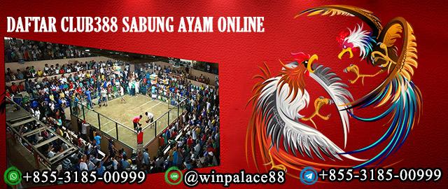 Daftar Club388 Sabung Ayam Online