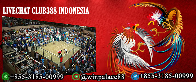Livechat Club388 Indonesia